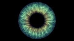 Closeup view of Human Eye Iris (Green and Yellow) Stock Footage
