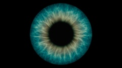 Closeup view of Human Eye Iris (Dark green and Yellow) Stock Footage
