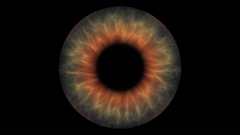 Closeup view of Zombie Eye Iris (Multiple Color Neon) Stock Footage