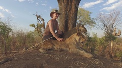 Conservationist with lion cubs slider view 4k Stock Footage