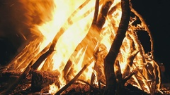 Big Campfire from Branches Burn at Night in the Forest Stock Footage