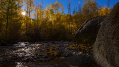 MoCo Timelapse of Fall Foliage by River at Sunrise in Eastern Sierra Stock Footage