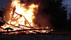 Campfire of the Branches Burn at Night in the Forest Stock Footage
