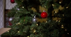 Cat under christmas tree with negative space Stock Footage