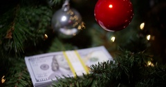 Money for christmas - cash under the tree Stock Footage