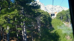 Shoot pine forests of the funicular Stock Footage