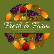 Fruit poster of vector fresh farm fruits harvest Stock Illustration