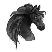 Horse art portrait. Mustang with raging eyes. Stock Illustration