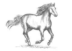 Horse racing sport equine symbol Stock Illustration