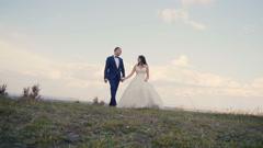 Wedding Couple Walk Stock Footage