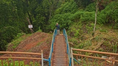 Man Stands on Small Wooden Bridge Photos Landscape of Park Stock Footage