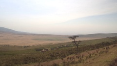 CLOSE UP: Driving past Maasai village with traditional houses in African valley Stock Footage