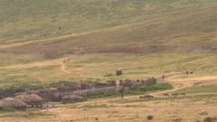CLOSE UP: Tourist safari jeep approaching maasai village on savannah foothills Stock Footage