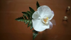 Boutonniere made of green branch and white orchid Stock Footage