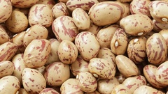 Pinto beans tracking shot Stock Footage