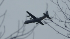 Hercules Airplane flying through trees - Military vehicle Stock Footage