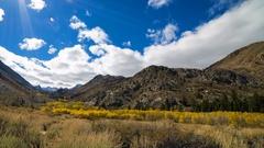 Timelapse of Fall Foliage along Creek in Eastern Sierra -Pan Left- Stock Footage