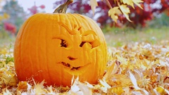 The pumpkin carved with funny face. Symbols of autumn and Halloween Stock Footage