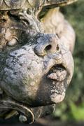 Beautiful close up portrait image of whimsical gargoyle on medieval fountai.. Stock Photos