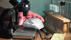Paleontologist studying  prehistoric life forms trilobites Stock Footage