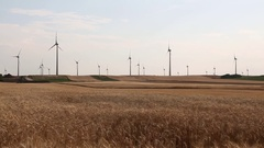 Wind turbines in a corn field, Austria Stock Footage