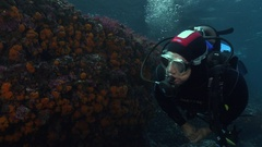 Scuba diver swimming along rocky reef Stock Footage