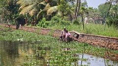 Motion along River with Plants past Men in Row Boat in Tropics Stock Footage