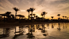Sunset on the beach in Egypt. Silhouettes of palm trees and parasols Stock Footage