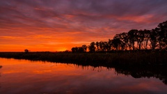 Timelapse of the sun rising over a river behind a tree Stock Footage