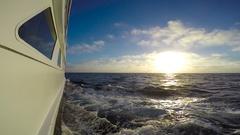 Sea Safari journey across the Pacific ocean. Stock Footage