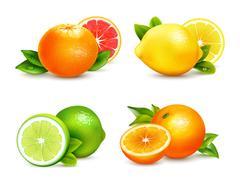 Citrus Fruits  4 Realistic Icons Set Stock Illustration