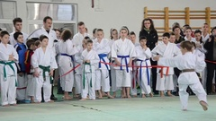 Martial arts competition attended by a group of children  Stock Footage
