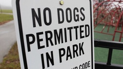 No Dogs Permitted in park sign near playground Stock Footage