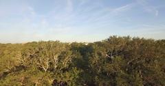 Upward Aerial Shot of White Point Garden in Charleston, SC Stock Footage