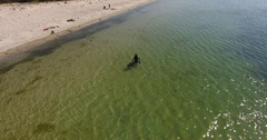 Aerial view of scuba diver emerges from sea to shore 4k Stock Footage