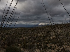 4K Cine gloomy desert storm Stock Footage