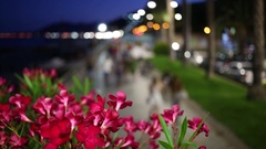 Beautiful pink flowers in the evening street filled with people Stock Footage