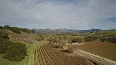 Aerial Drone Footage Of Santa Ynez, Ca wine Vineyards Stock Footage