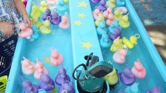 People take multi-colored rubber ducks from the water flow Stock Footage