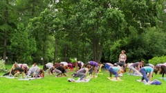 Men and women make exercises during yoga training on grass Stock Footage