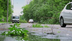 Transport traffic on street with broken branches and fallen trees Stock Footage