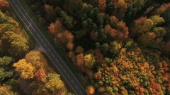 Aerial view of country road and autumnal forest Stock Footage