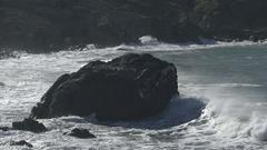 Ocean hitting big rock with bird on top Stock Footage