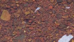 Intense red rocks in a pool in Karijini NP Stock Footage