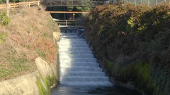 Fish ladder spilway Olympic Peninsula Wa. State Stock Footage