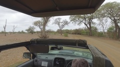 Pov of safari vehicle driving 4k Stock Footage