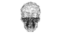 A spooky wireframe skull undulates - Skull 006 HD Stock Video Stock Footage