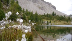 A scenic lake within a forest in the mountains. Stock Footage
