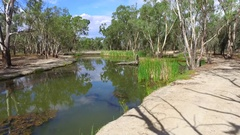 POV of dirt track through bushland on billabong / lagoon Stock Footage