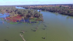 Aerial view of algae lagoon house boat holiday Murray River Australia Stock Footage